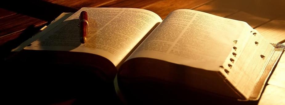Biblia na Chomiczówce 2017/2018